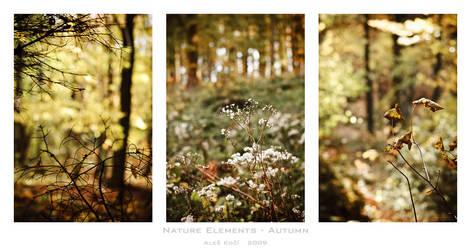 Nature elements - Autumn by Westik