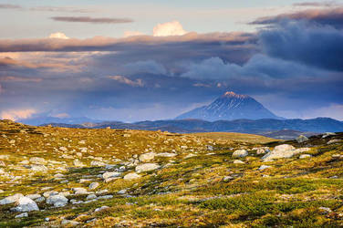 Hardangervidda by Westik