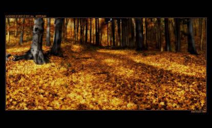 Golden forest by Westik