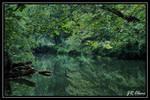 Talladega Creek by eskimoblueboy