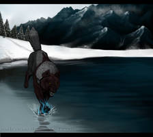 Fire and ice by Walerinaa