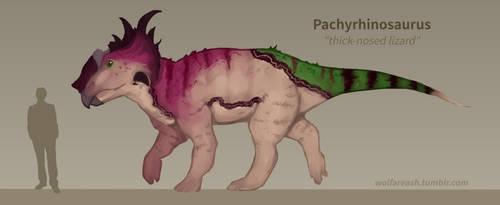 pachyrhinosaurus by petravi