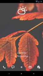Orange leaves by DejanB