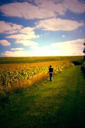 The Walk by Katbroo