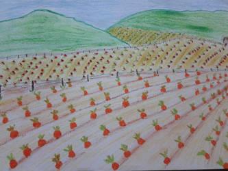 paisaje (sembrarios) by linaaventurera