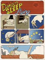 The Dangers of Sleep Flying by CassieForgen