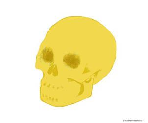 Skull WIP by blacktatsuofdarkness