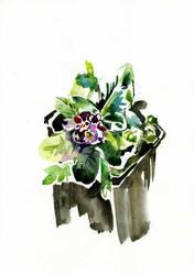Flower-sketch-01 by Joinerra