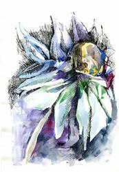 Winter-flower by Joinerra