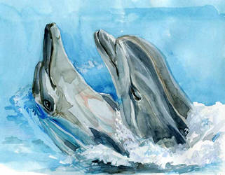 Dolphins-postcard by Joinerra