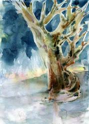 Old-oak-winter-solstice-04 by Joinerra