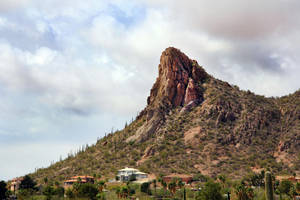 Tucson Mountains 2477 by Mammoth-Hunter