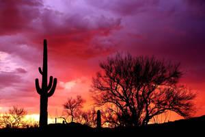 Sunset 0348 by Mammoth-Hunter
