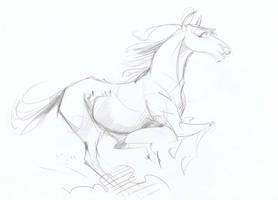 Horse Sketch by Taski-Guru