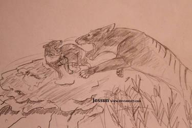 Attack! Thylacine vs tasmanian devil by Jossun