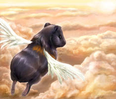 Off to Guineapig Heaven by Risachantag