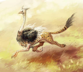 Ostrich Griffin by Risachantag