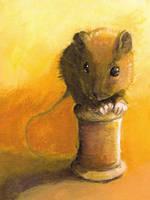 Cotton Rat by Risachantag
