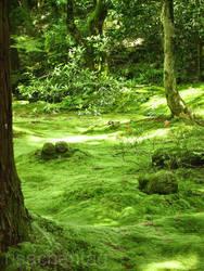 Japan: Sanzen-in Spirits by Risachantag