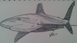 Requin by LoiseFenollCreation