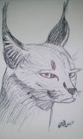 Caracal by LoiseFenollCreation