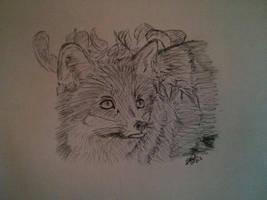 Renard by LoiseFenollCreation