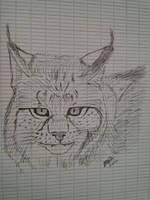 Lynx by LoiseFenollCreation