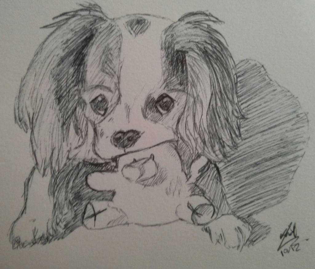 Cavalier King Charles by LoiseFenollCreation
