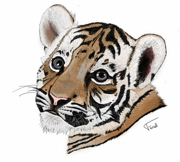 Tiger by LoiseFenollCreation