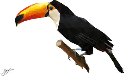 Low Poly Toucan by ArtisticIndifference