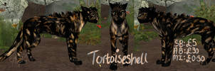 Tortoiseshell Cat Preset Auction by Emelia-Tiger