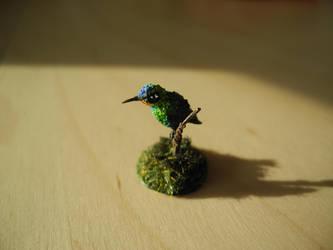Fiery throated Hummingbird by asa-baijan