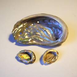 Abalone pendants by asa-baijan