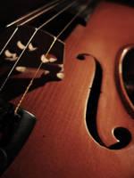 Violin by stolentime