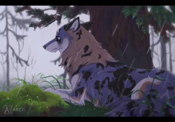 Commission: At the edge of rainy forest by Astarcis