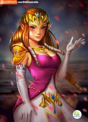 Princess Zelda by Didi-Esmeralda