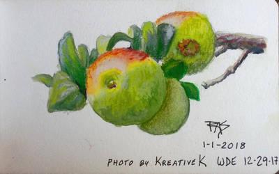 Apples by robertsloan2