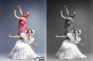Fokin  Fokina - The Spirit of the Rose - ballet by jecinci