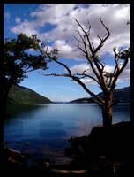 Loch Lohman, Scotland by afireinsideme