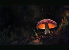 Lonely Mushroom by VirginiaSoares