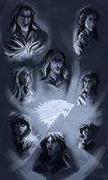 House Stark (study) by kallielef