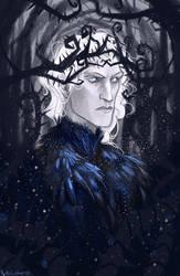 Winter's Prince by kallielef