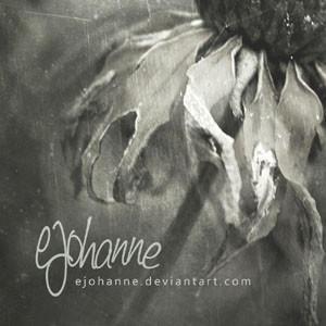 ejohanne's Profile Picture