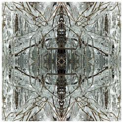 Ice Age by ejohanne