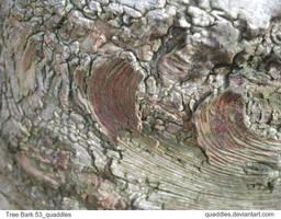 Tree Bark 53_quaddles by quaddles
