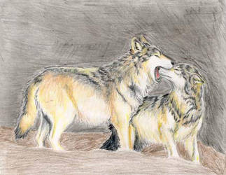 Wolf Reprimand WIP by Ara-Tun
