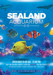 Aquarium Sea Land Flyer by n2n44