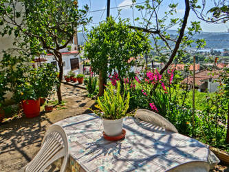 greek village garden by BL00DYSunflowers