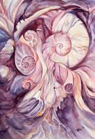 mood of shells by ireneya