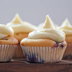 blueberry cupcakes II by photofairy